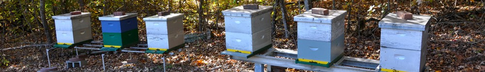 The Alamance County Beekeepers